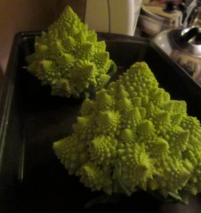 O Tannenbaum, O Tannenbaum, how lovely are your fractals!